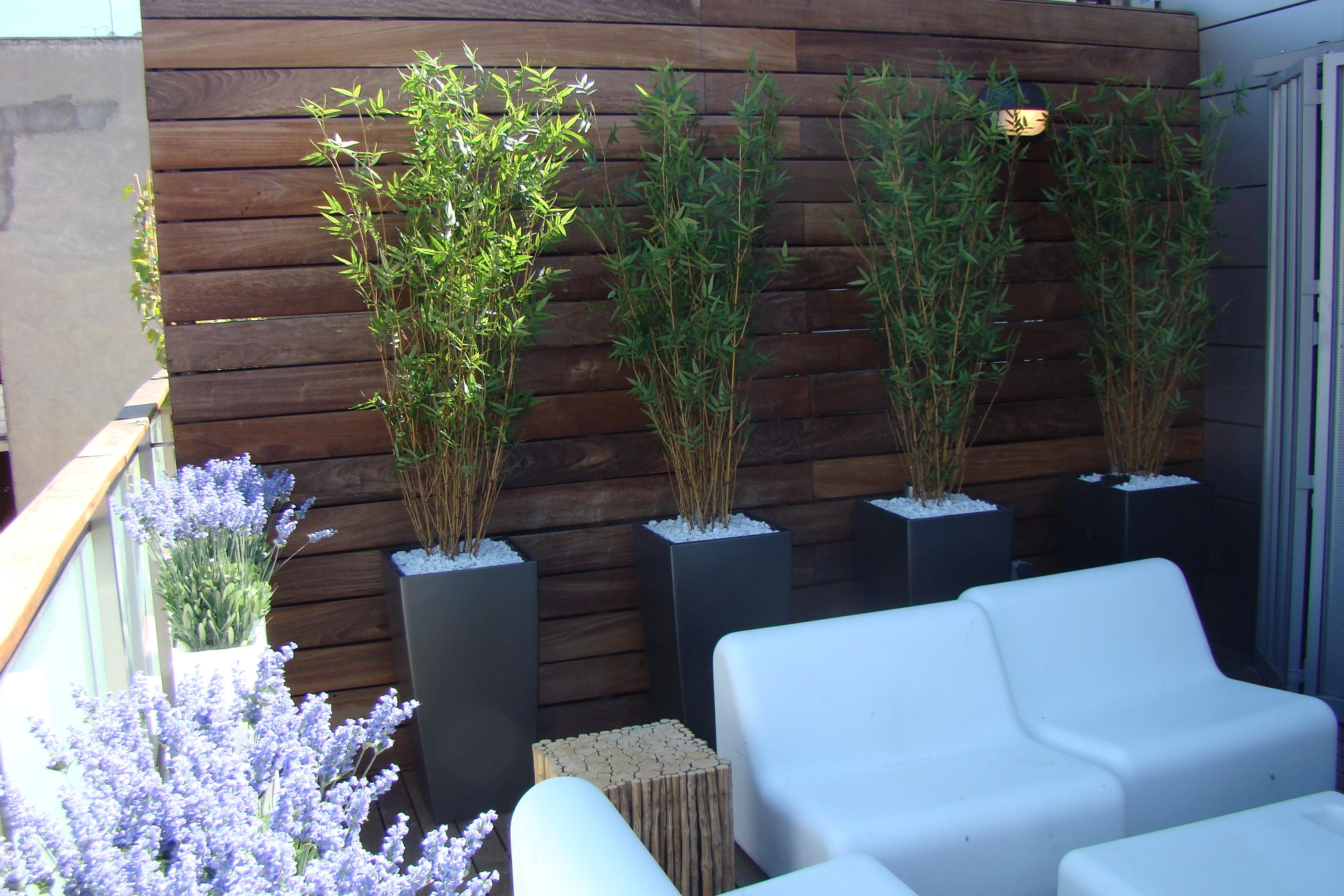 Omb decoraci n jardiner a for Decoracion jardineria
